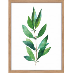 Tableau plante verte